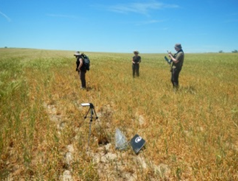 MASOMED field measurements